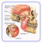 Articolazione temporo-mandibolare (atm)